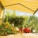 Halbkassettenmarkise Weinor Semina - EcoWintergärten